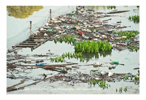 Backwater River Trash