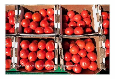 Rack of tomatoes at Misty Valley Farms Market