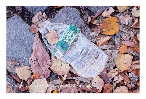 Flattened water bottle in the street