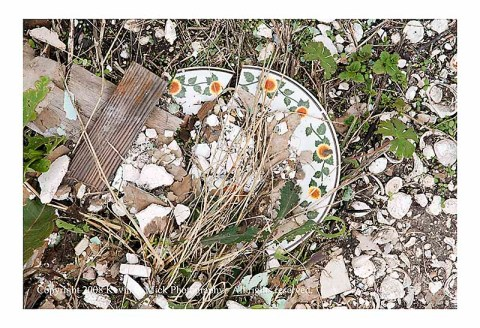 Closeup of broken plate lying in street NOLA