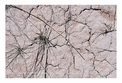 Cracked ground in the Badlands