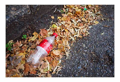 Plastic Coke bottle in leaves