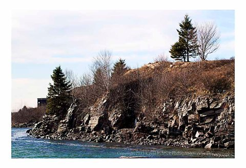 The coast of Passamaquoddy Bay in Perry, Maine.