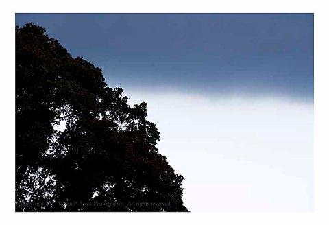 Overhanging dark storm cloud.