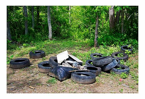 Tires and debris thrown near woods.