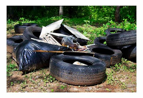 Closer view of tires and debris thrown in woods.