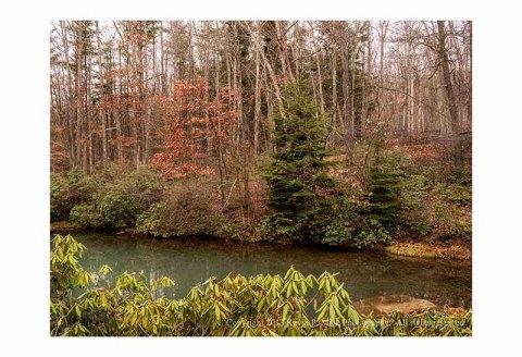 Bear's Den pond after rain.