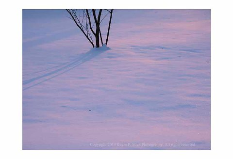 Sun setting over snow with tree shadows.