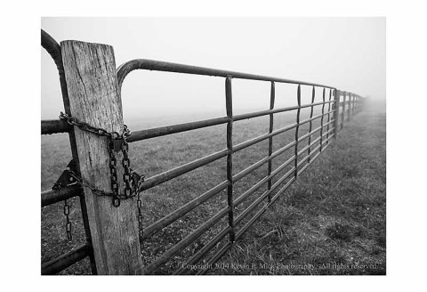 Old fence and lock fading into the foggy morning.