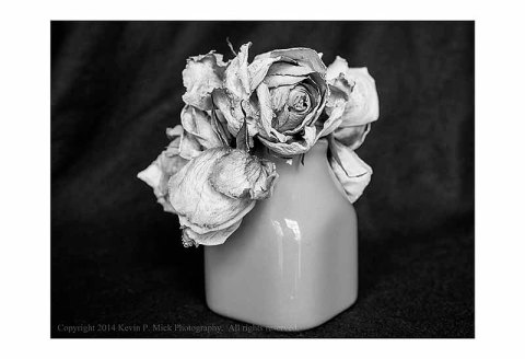 BW photograph of a dry, withered rose in a vase.