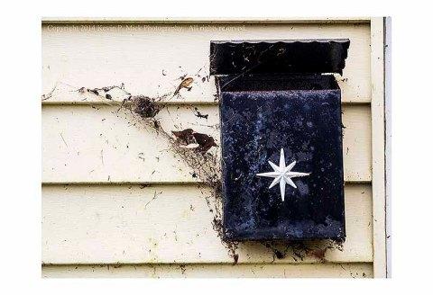Rusted mailbox and cobwebs.