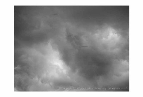 BW photographs of birds flying past with storm clouds in the background.