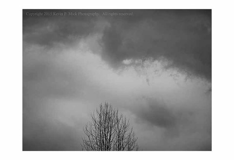 BW photograph of a tree with storm clouds circling overhead.