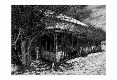 BW photograph of an abandoned house with overgrowth