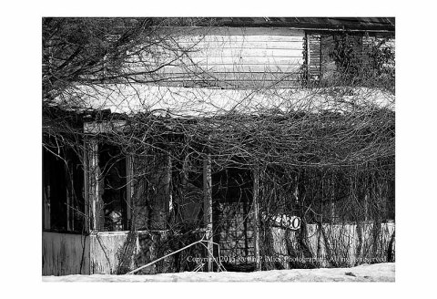 BW photograph of an abandoned house porch with overgrowth