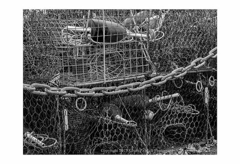 BW photograph of traps and floats in Chesapeake City, MD.