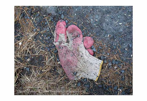 Lost pink glove lying in the road