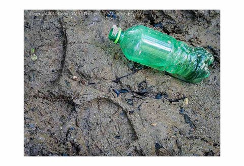 Bootprints and soda bottle in mud