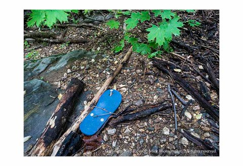 Flipflop among debris from recent Morgan Run flooding