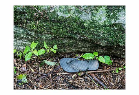 Lone flipflop at the base of a rock
