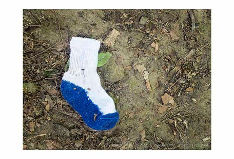 Lone sock in the mud