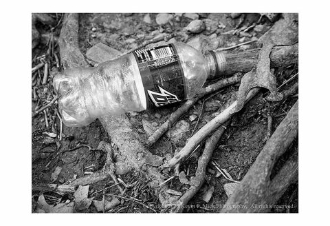 BW photograph of an abandoned Mountain Dew bottle atop some tree roots.