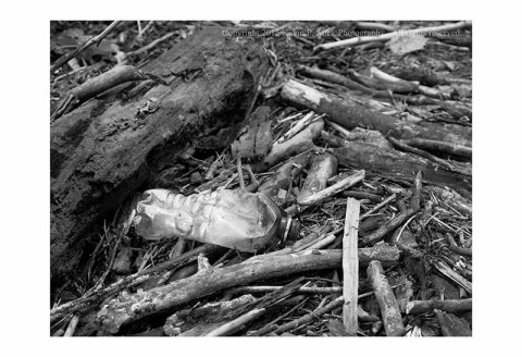 BW photograph of an abandoned and burned plastic bottle amid stream debris