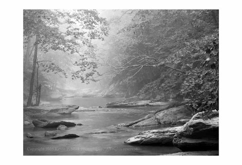 BW photograph of Morgan Run looking upstream on a foggy morning