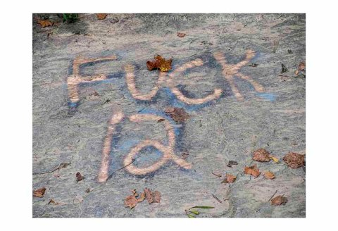 Expletive painted on rocks at Morgan Run