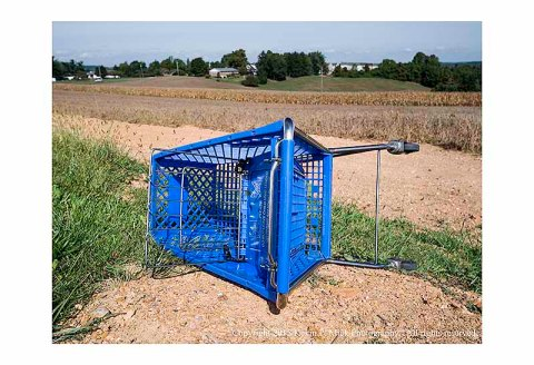 Aboandoned shopping cart near a cornfield