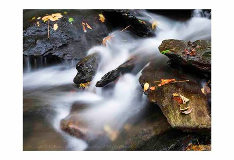 Running water with autumn leaves and rocks