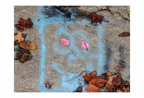 Photograph of graffiti on rocks