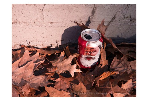 Santa Claus version of a Coca-Cola soda can sitting among oak leaves, with late afternoon side light