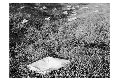 BW photograph of a discarded pizza box with napkins strewn into the distance