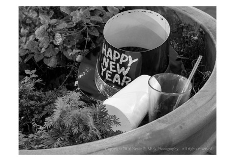 BW photograph of a New Years Eve hat, a styrofoam cup, and a plastic cup in a flowerbed New Years morning