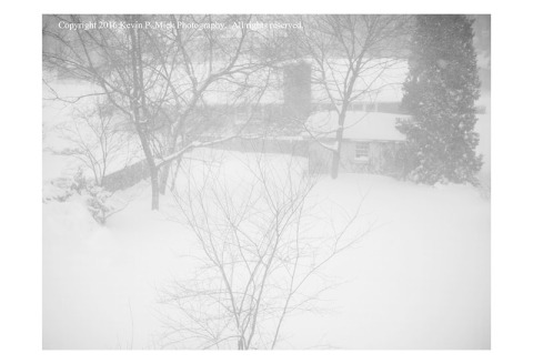 BW photograph of a backyard in the middle of a snowstorm