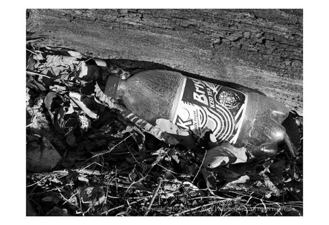 BW photograph of a thrown away plastic iced tea bottle beside a decaying log
