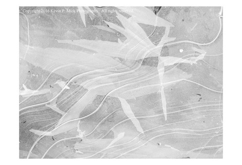 BW photograph of an iced-over puddle in April 2016.