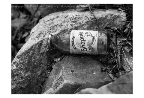 BW photograph of a nearly full Snapply bottle of tea lying in the woods.