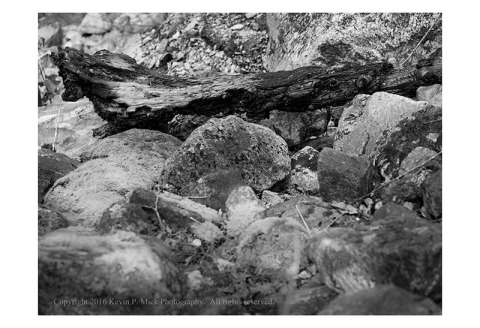 BW photograph of a charred log lying among rocks.