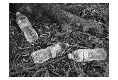 BW photograph of three full water bottles laying at the base of a tree.