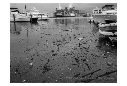 BW photograph of storm debris floating in a marina at Fells Point.