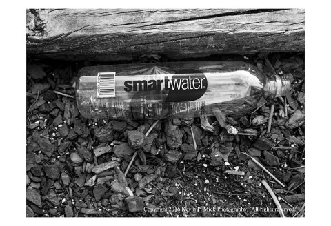 "BW photograph of a ""Smart Water"" bottle laying in a flowerbed."