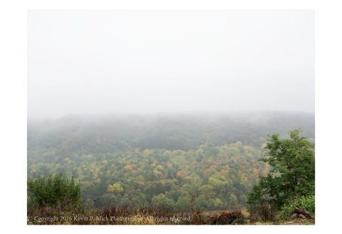 Foggy mountainside with autumn colour.