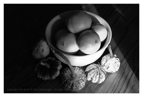 BW photograph of oranges and gourds in a white bowl with strong sidelight.