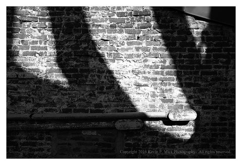BW photograph of a tree's shadow against a brightly lit brick wall.