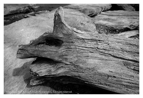 BW photograph of a fallen tree laying upon a large rock.