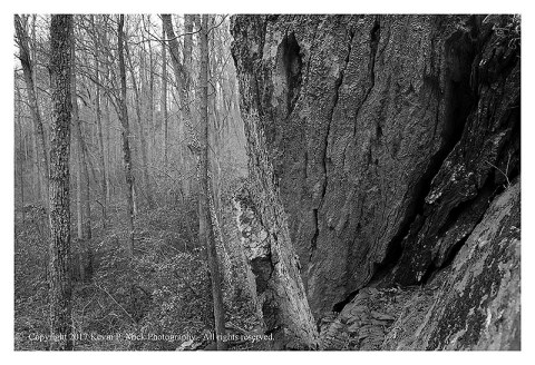 BW photograph of the prow of a rock with trees to the left.