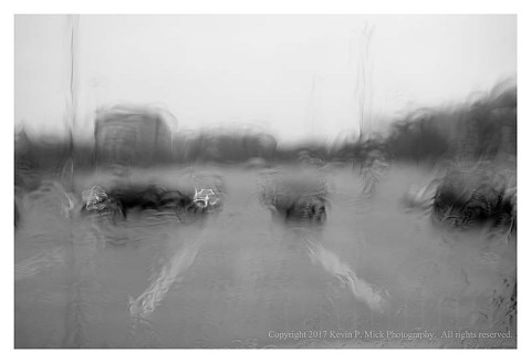 BW photograph of a dark vehicle driving in a parking lot on a rainy day as seen through a windshield.