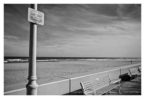 "BW photograph of a ""No Profanity"" sign on the Ocean City. MD boardwalk."
